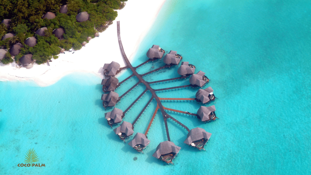 A aerial view of cabanas in the ocean